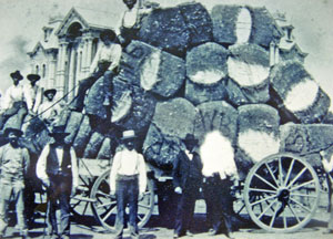 Cotton Wagon loaded with cotton bales; Courthouse in the background